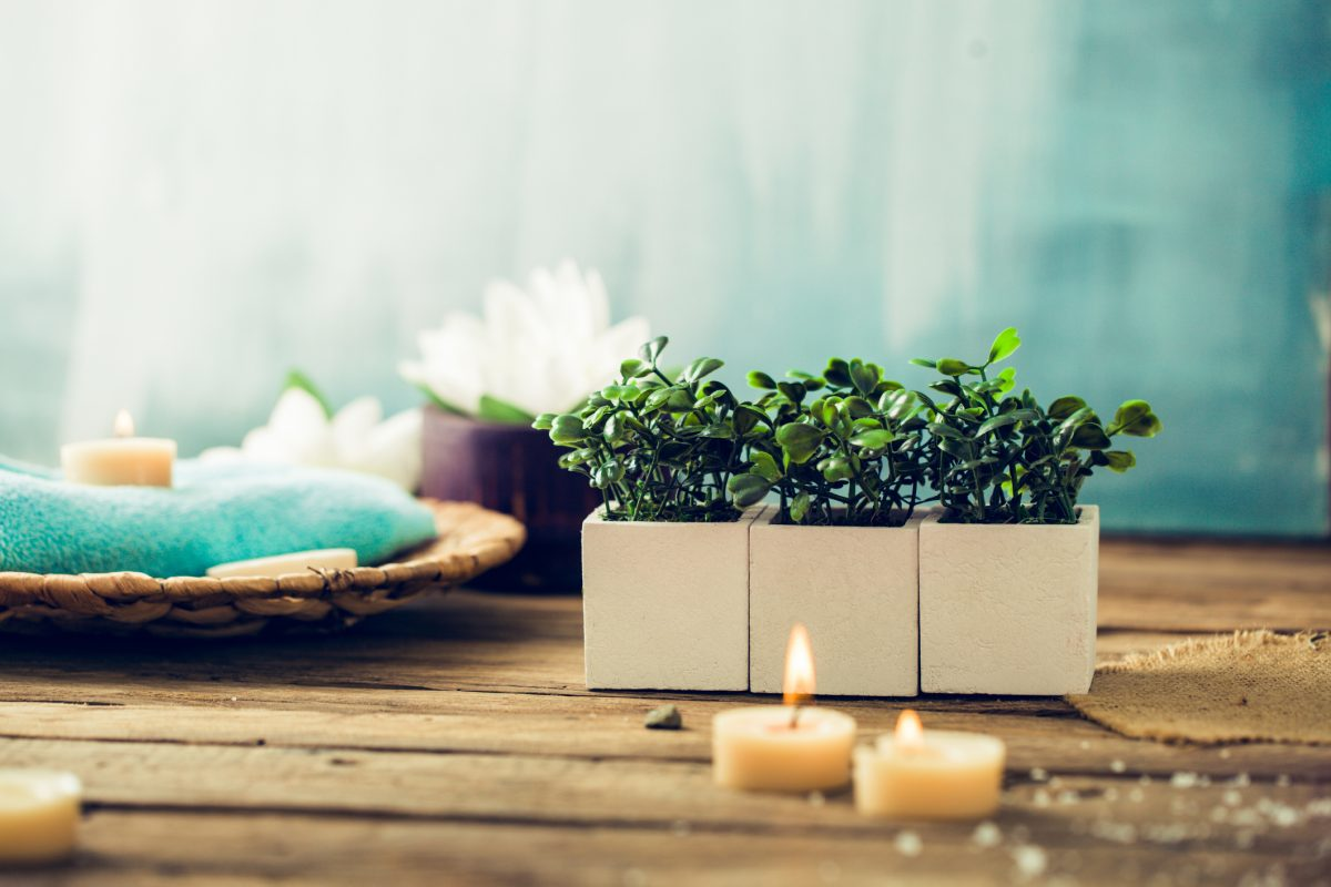 Lit candles and plants in spa room